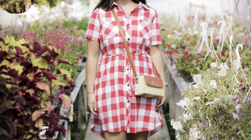 what to wear for Fourth of July, red plaid dress, picnic dress, fourth of july plaid dress, chicago blogger, Baily Lamb